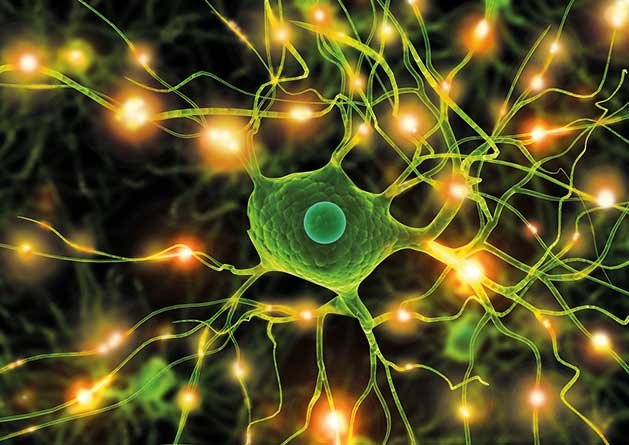 FlashWave Therapie Nervenzellen